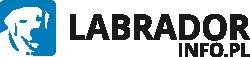 Labrador.info.pl