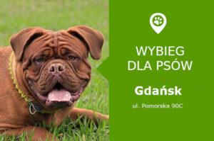 Wybieg dla psów, Gdańsk, Pomorska 90C przy Potoku Oliwskim, pomorskie