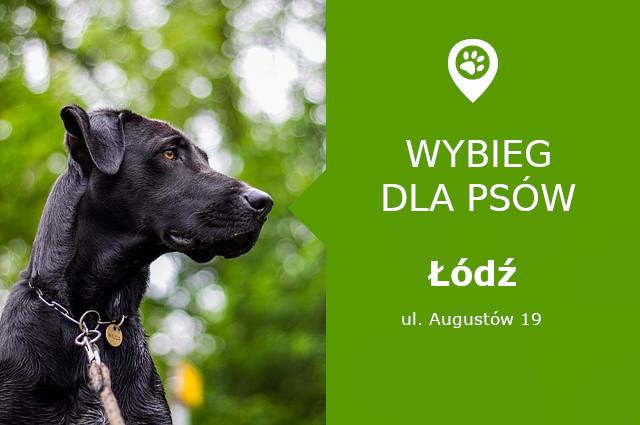 Wybieg dla psów, Łódź, Psi Park Widzew Łódź, łódzkie