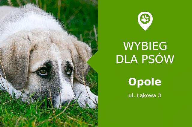 Wybieg dla psów Opole, Łąkowa 3, opolskie