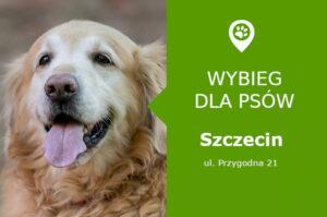Wybieg dla psów Szczecin ul. Przygodna 21