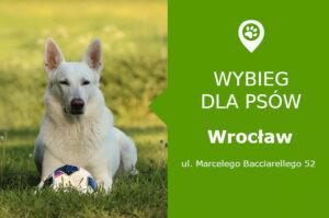 Wybieg dla psów, Wrocław, Marcelego Bacciarellego 52, dzielnica Bartoszowice, dolnośląskie