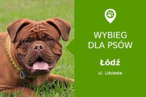 Psi park Łódź, ul. Liściasta, w parku Dolina Sokołówki, łódzkie