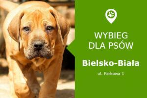 Wybieg dla psów Bielsko-Biała, Parkowa 1, Park Włókniarzy, śląskie