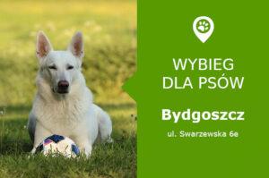 Wybieg dla psów Bydgoszcz, ul. Swarzewska 6e, osiedle Bartodzieje, kujawsko-pomorskie