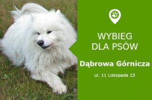 Wybieg dla psów Dąbrowa Górnicza, ul. 11 Listopada 13, miasteczko rowerowe, slaskie