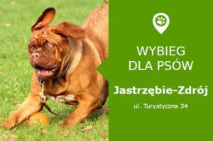 Wybieg dla psów Jastrzębie-Zdrój, ul. Turystyczna 34, przy stadionie GKS Jastrzębie, slaskie