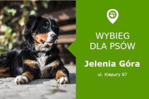 Wybieg dla psów Jelenia Góra, ul. Kiepury 67, dzielnica Zabobrze, dolnośląskie