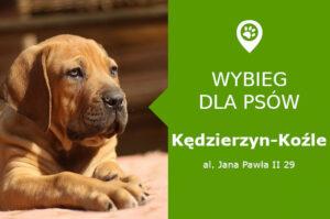 Wybieg dla psów Kędzierzyn-Koźle, Dom Kultury Chemik, opolskie