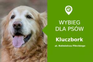 Wybieg dla psów Kluczbork, Błonie Kluczborskie, opolskie