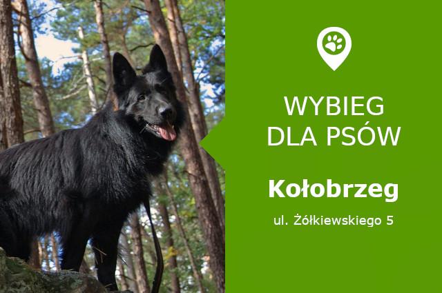 Wybieg dla psów Kołobrzeg
