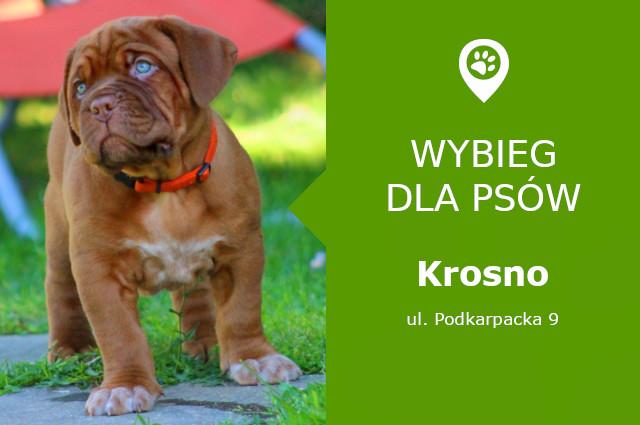 Wybieg dla psów Krosno, ul. Podkarpacka 9, przy węźle Guzikówka, podkarpackie