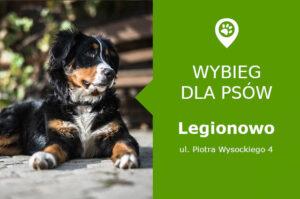 Wybieg dla psów Legionowo, ul. Piotra Wysockiego 4, wybieg Psi Raj, mazowieckie