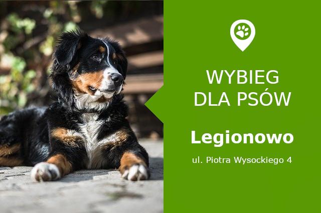 Wybieg dla psów Legionowo