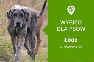 Wybieg dla psów Łódź ul. Okoniowa 20