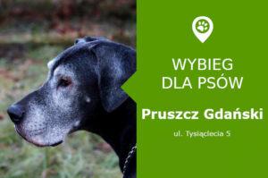 Wybieg dla psów, Pruszcz Gdański, Tysiąclecia 5, przy zbiorniku retencyjnym SP 2, pomorskie