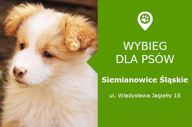 Wybieg dla psów Siemianowice Śląskie, ul. Władysława Jagiełły 15, przy centrum handlowym Atrium Siemianowice, slaskie