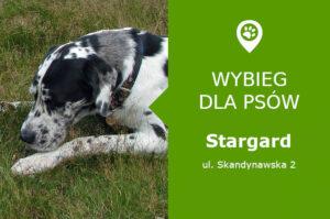 Wybieg dla psów Stargard, ul. Skandynawska 2, przy rondzie 15 Południk, zachodniopomorskie