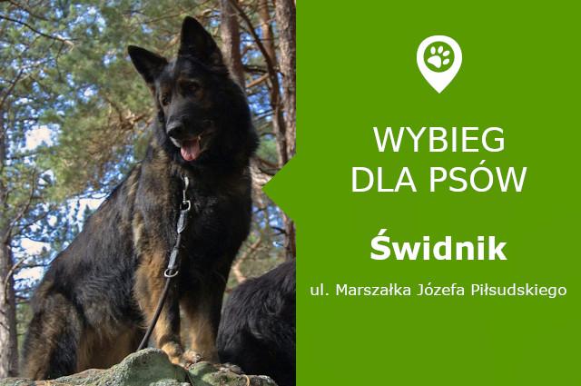 Wybieg dla psów Świdnik, Marszałka Józefa Piłsudskiego, skatepark, Urząd Miasta, lubelskie