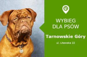 """Wybieg dla psów Tarnowskie Góry, ul. Litewska 22, przy domu kultury """"Jubilat"""", slaskie"""