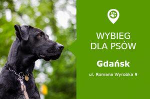 Plac zabaw dla psów Gdańsk, ul. Romana Wyrobka 9, dzielnica Piecki-Migowo, obok plac zabaw, pomorskie