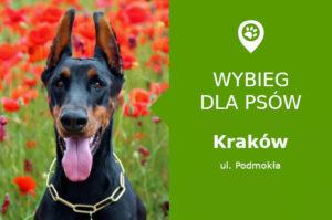 Plac zabaw dla psów Kraków, ul. Podmokła, malopolskie