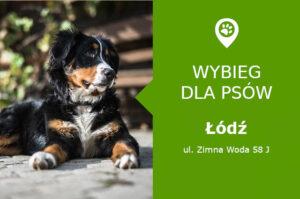 Plac zabaw dla psów Łódź, ul. Zimna Woda 58J, Hotel Psia Chatka, łódzkie