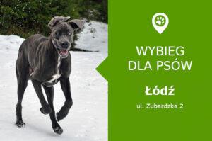 Plac zabaw dla psów Łódź, ul. Żubardzka 2, na przecięciu z Inowrocławską, łódzkie