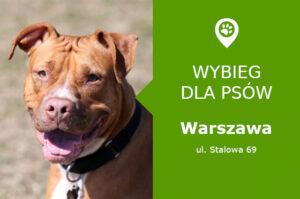 Plac zabaw dla psów Warszawa, Stalowa 69, dzielnica Praga Północ , mazowieckie