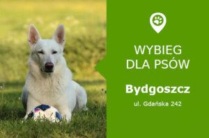 Psi park Bydgoszcz
