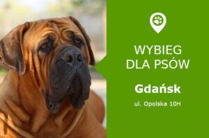 Psi park Gdańsk, ul. Opolska 10H, Przymorze, przy Parku im. Jana Pawła II, pomorskie