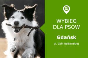 Psi park Gdańsk, ul. Zofii Nałkowskiej, Piecki-Migowo, pomorskie