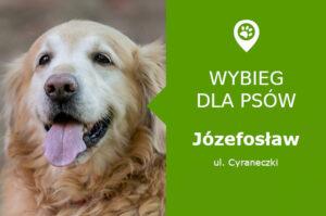 Psi park Józefosław, ul. Cyraneczki, rondo Cyraneczki Wilanowska, mazowieckie