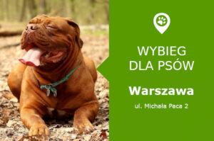 Psi park Warszawa, Michała Paca 2, dzielnica Praga Południe, Park Polińskiego, mazowieckie