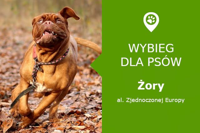 Psi park Żory