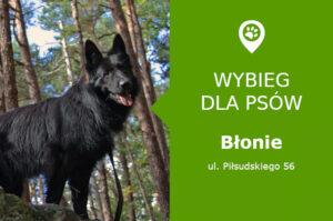 Wybieg dla psów Błonie, ul. Piłsudskiego 56, przy torach kolejowych, mazowieckie