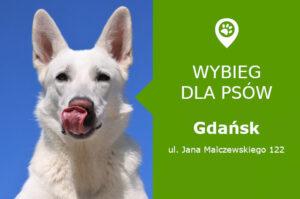 Wybieg dla psów Gdańsk, Jana Malczewskiego 122, dzielnica Siedlce, przy placu zabaw, pomorskie