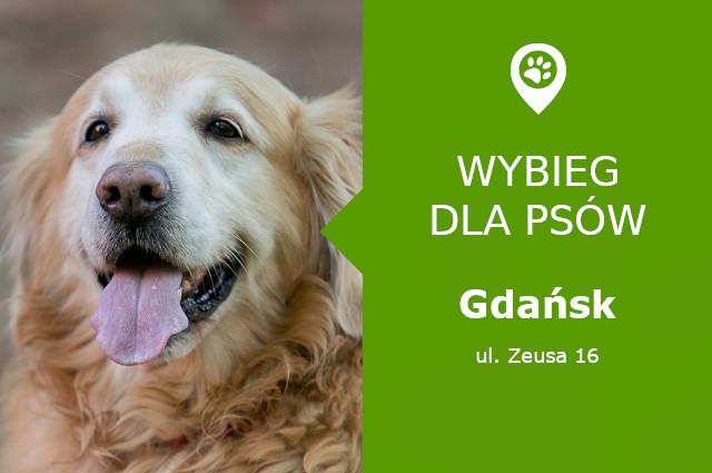 Wybieg dla psów Gdańsk, Zeusa 16, Osowa, Park Chirona, pomorskie