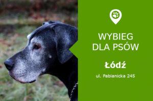 Wybieg dla psów Łódź, ul. Pabianicka 245, centrum handlowe Port Łódź, łódzkie