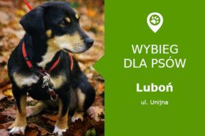 Wybieg dla psów Luboń, ul. Unijna, Park Papieski, ROD Bartek, wielkopolskie