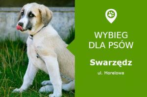 Wybieg dla psów Swarzędz, ul. Morelowa w sąsiedztwie ul. Poznańskiej, wielkopolskie