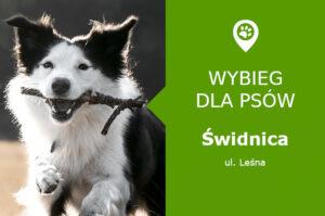 Wybieg dla psów Świdnica, ul. Leśna, Park Sikorskiego, dolnośląskie