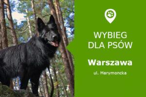 Wybieg dla psów Warszawa, ul. Marymoncka, dzielnica Bielany, rejon Las Bielański, Polana Hutnik, mazowieckie