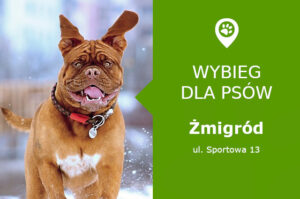 Wybieg dla psów Żmigród, ul. Sportowa 13, przy stadionie Piast Żmigród, dolnośląskie