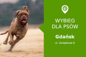 Dog park Gdańsk, ul. Związkowa 8, dzielnica Orunia, obok plac zabaw, pomorskie