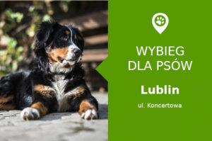 Dog park Lublin