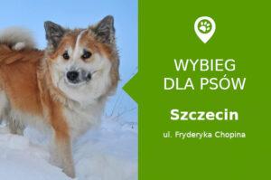 Dog park Szczecin, Fryderyka Chopina, dzielnica Osów, obok maszt radiowy, zachodniopomorskie
