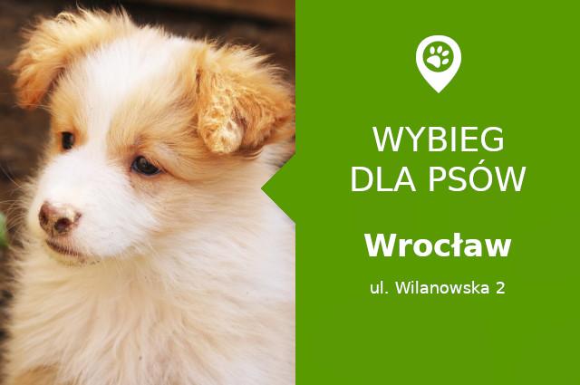 Dog park Wrocław, ul. Wilanowska 2, dzielnica Zakrzów, dolnośląskie