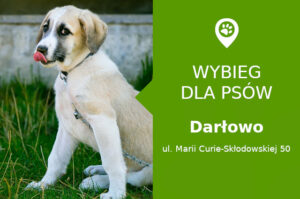 Psi park Darłowo, Marii Curie-Skłodowskiej 50, Park Jordanowski, zachodniopomorskie