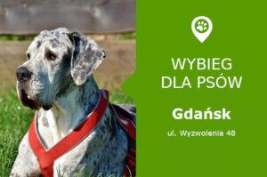 Psi park Gdańsk, ul. Wyzwolenia 48, dzielnica Nowy Port, Plac Przyjaciół, pomorskie